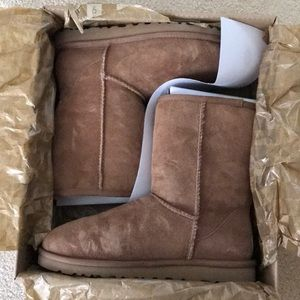 Chestnut Short Winter Boots by UGG